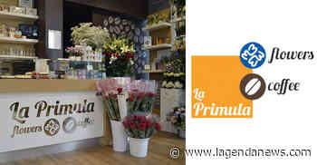 """Il negozio di fiori """"La Primula Flowers & Coffee"""" di Avigliana è operativo, anche con le consegne a domicilio - http://www.lagendanews.com"""