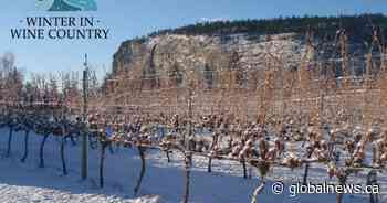 Osoyoos Winter in Wine Country Festival