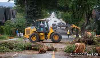 British Columbians stocked up for COVID-19, but unprepared for storms: BC Hydro