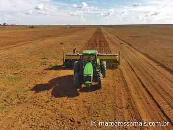Campo Novo do Parecis segue com déficit hídrico e terá replantio de soja - Matogrossomais