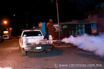 Sin Tregua, Combate al Dengue en las Colonias de Uruapan - Cadena Digital de Noticias