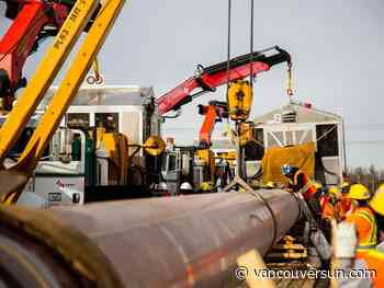 Trans Mountain pipeline construction continues as new critique released