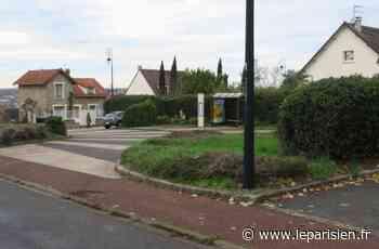 Saint-Pierre-du-Perray : le vendeur de chocolats ne travaille pas pour l'hôpital - Le Parisien