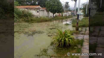 Lago de Valencia podría ocasionar tragedia en Mata Redonda y La Punta - ACN ( Agencia Carabobeña de Noticias)
