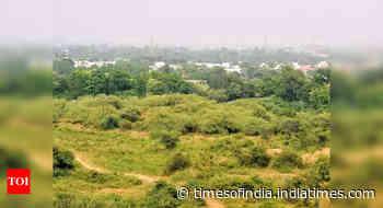 On wildlife week, India de-notifies 1,000 sq km of its 'protected areas'