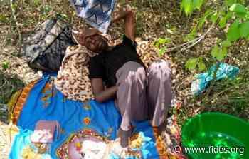 AFRICA/MOZAMBICO - Giornalisti di una radio cattolica costretti a nascondersi nella foresta per sfuggire ai jihadisti - Fides