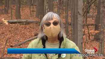 Pincourt residents rejoice local forest will be saved   Watch News Videos Online - Globalnews.ca