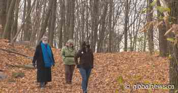 Rousseau forest in Pincourt saved from future development project - Global News