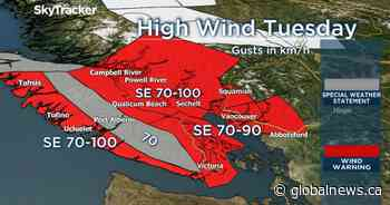 Wind warning in effect with gusts up to 90 km/h possible for parts of B.C.'s south coast