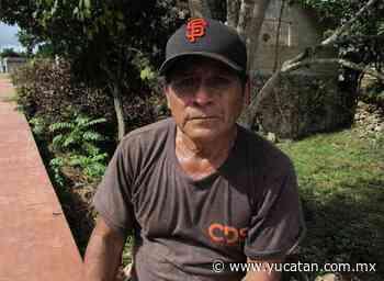 Apicultores aún esperan ayuda en Peto - El Diario de Yucatán
