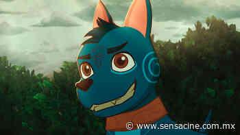 'El camino de Xico': La verdadera inspiración en Studio Ghibli para crear la película mexicana - SensaCine México