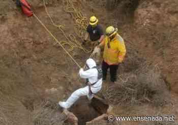 Hallan un cuerpo dentro de un pozo en San Quintin - Ensenada.net