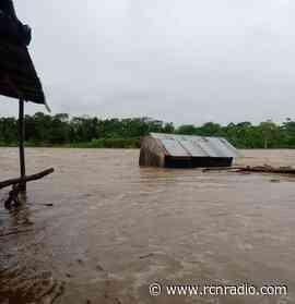 Cerca de 500 familias afectadas dejaron las lluvias en Vigía del Fuerte, Antioquia - RCN Radio