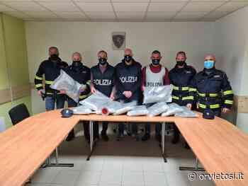 Sequestrati dalla Stradale di Orvieto 11 kg di marijuana per un valore di 100mila euro. In manette due ventenni - OrvietoSì