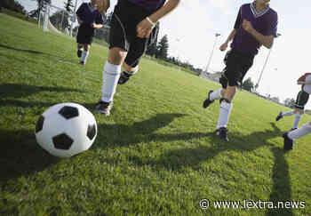 """Tarquinia Calcio: """"Le istituzioni federali sostengano le associazioni sportive dilettantistiche"""" - lextra.news"""