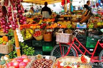 Aulla: da sabato 14 novembre riprende regolarmente il mercato del sabato - Eco Della Lunigiana