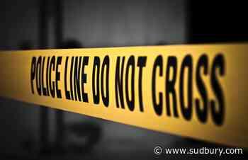 Police seek help in solving sudden death off Killarney highway on Oct. 25