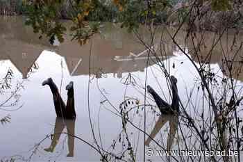 Voorbijganger denkt het ergste wanneer ze twee paar benen uit het water ziet steken, maar haar vrees blijkt onterecht
