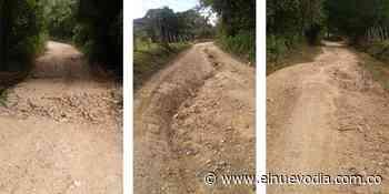 Comunidad solicita mantenimiento vial en carreteable que une a Ortega y Coyaima - El Nuevo Dia (Colombia)