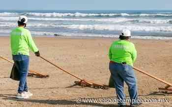 Intensifican trabajos de limpieza en playa Miramar - El Sol de Tampico