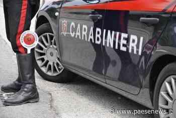 ISERNIA / VENAFRO – Coronavirus, droga e maltrattamenti: sanzioni e denunce - Paesenews