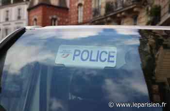 Dammarie-les-Lys : deux arrestations après des tirs d'arme automatique - Le Parisien