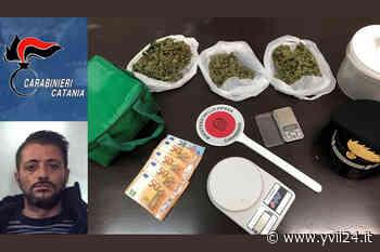 Belpasso. Tenta di disfarsi della droga, ma viene arrestato — YVII 24 - Yvii24.it