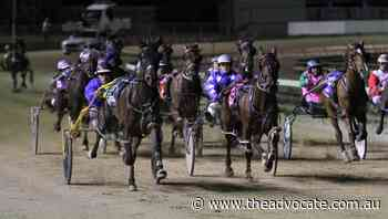 North West pacer wins $50000 Devonport feature race at only third start - The Advocate