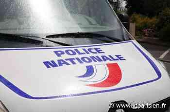 Moissy-Cramayel : le trafiquant arrêté parce qu'il ne portait pas le masque - Le Parisien