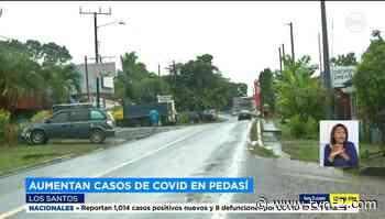 Provincias Minsa investiga casos de COVID-19 en el distrito de Pedasí - TVN Noticias