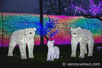 A 2020 guide to seasonal events around Metro Vancouver