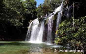 Con jornada de prueba, sector turístico en Paicol se reabre al público - Noticias