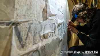Wapenschild ontdekt bij restauratie Sint-Martinuskerk (Aalst) - Het Nieuwsblad