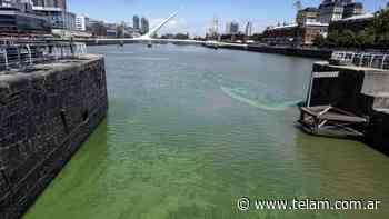 """Descartan que las """"aguas verdes"""" sean tóxicas - Télam"""