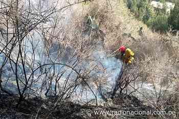 Carhuaz: Incendio forestal afecta 10 hectáreas de pastos naturales y arbustos - Radio Nacional del Perú