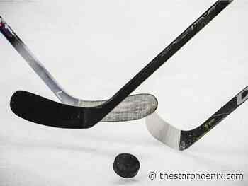 Martensville Minor Hockey Association pauses season due to COVID-19 - Saskatoon StarPhoenix