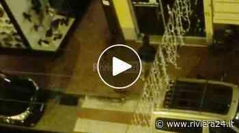 Ventimiglia, uomo prende a calci vetrina in via Cavour: il filmato - Riviera24