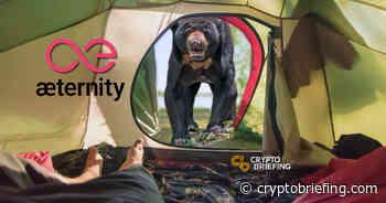Aeternity Price Analysis AE / USD: Unwelcome Bears - Crypto Briefing