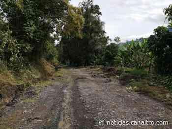 Realizan mantenimiento sobre la vía Ragonvalia – Chinácota - Canal TRO