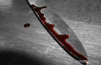 Bauchi teenager allegedly stabs man to death over girlfriend - The Punch
