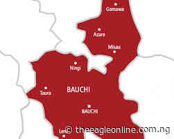 Bauchi Agency auctions 1,200 bags of charcoal seized from dealers - - The Eagle Online