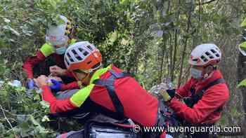 Un hombre cae por un barranco mientras recogía setas en un bosque del Maresme - La Vanguardia