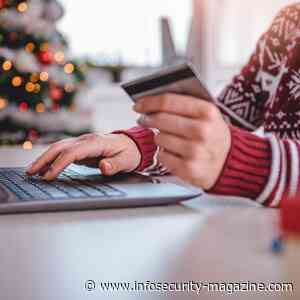 US Holiday Shoppers Fear Cyber-Scams