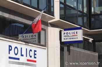 Brie-Comte-Robert : deux chiens placés à la SPA après que l'un a mordu une adolescente - Le Parisien