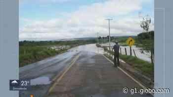 Chuva forte derruba árvores e causa estragos em Porto Ferreira e Descalvado; veja fotos - G1