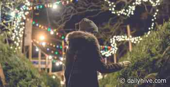 10 places you can buy a live Christmas tree in Montreal | Listed - Daily Hive