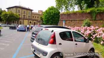 Parcheggi, stalli blu gratis a Lucca fino al 10 gennaio - Luccaindiretta - LuccaInDiretta