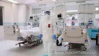 Coronavirus, 205 nuovi contagi e nessun decesso » La Gazzetta di Lucca - La Gazzetta di Lucca