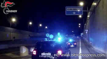 Policoro (Mt), contrasto al caporalato: Carabinieri denunciano 10 persone - Oltre Free Press - Quotidiano di Notizie Gratuite - Oltre Free Press