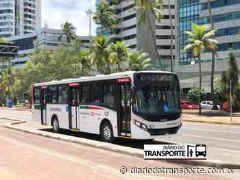 Grupo Borborema adquire ônibus da Caio para operar no Sistema Grande Recife - Adamo Bazani
